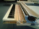 Piano Tuning, The Action