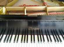 http://piano-tuner-technician.com/wp-content/uploads/2014/03/2012-02-16-12.05.43.jpg