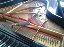 http://piano-tuner-technician.com/wp-content/uploads/2014/03/2012-02-16-12.38.52.jpg