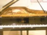 Fazioli Piano (800x600)