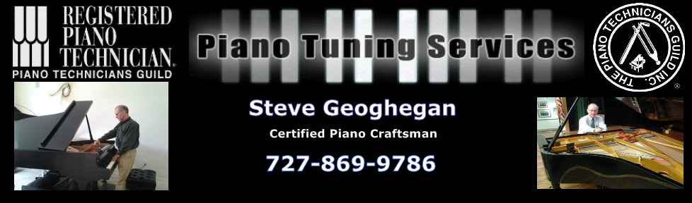 Piano Tuner Technician|Piano Tuner|Technician|Tuning|Repairs|Service|Tampa Bay